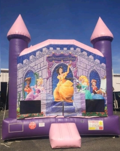 Rental store for Inflatable DISNEY PRINCESS in Plymouth MN